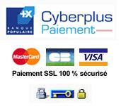 Cyberplus paiement de la Banque populaire